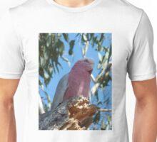 Gunnedah Galah Unisex T-Shirt