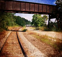 Vintage Railroad Tracks by Phil Perkins