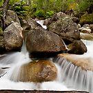 Eurobin Creek by Stephen Ruane