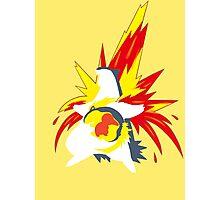 【20600+ views】Pokemon  Cyndaquil>Quilava>Typhlosion Photographic Print