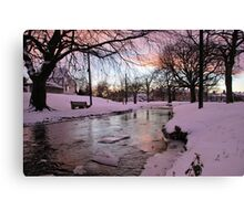 Cold View Canvas Print