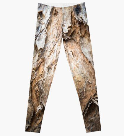 Paperbark Swamp Tree, Australia  Leggings