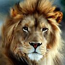 Aslan'... by Valerie Anne Kelly