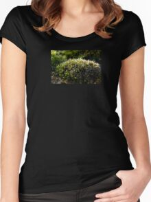 Moss On Stone Wall Women's Fitted Scoop T-Shirt