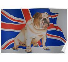British Bull dog Poster