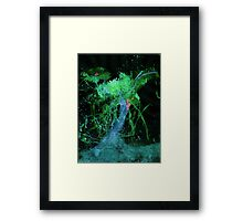 WDV - 240 - Vined Age Framed Print