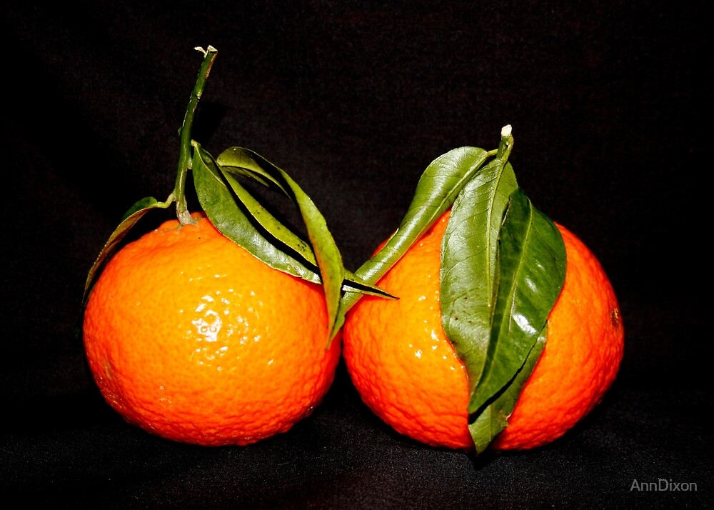 Darling Clementines by AnnDixon