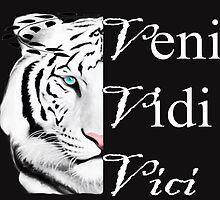 veni vidi vici- Art + Products Design  by haya1812