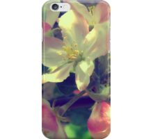 Pink Apple Blossom 4 iPhone Case/Skin