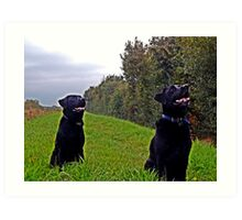 Two Labs Together Art Print
