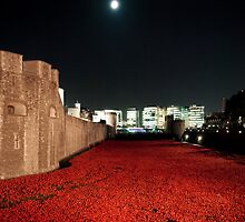 Poppies at theTower of London - At Night with the Shard. by InterestingImag