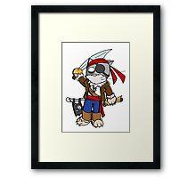 Pira cat (chat pirate) Framed Print