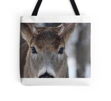 White-tailed Deer Buck up close and personal Tote Bag