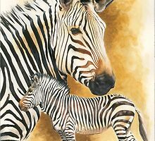 Mountain Zebra by BarbBarcikKeith
