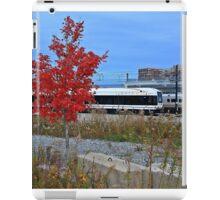 Fall Color iPad Case/Skin