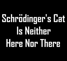 Schrodinger's Cat Is Neither Here Nor There by geeknirvana