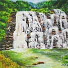 Abbey Waterfalls, Coorg India by nksran