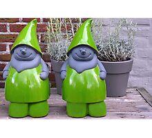 Green pixies Photographic Print