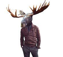 Moose by Sney1