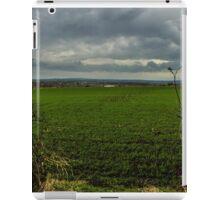 Hidden landscape iPad Case/Skin