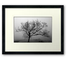 Memory in the Mist Framed Print