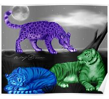 Colored Big Cats Poster