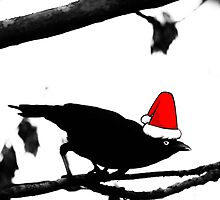 Christmas Crow by rossyoung