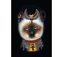 Pharaoh Cat Art Photographic Print
