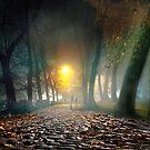 Peaceful Stroll 2 by Igor Zenin