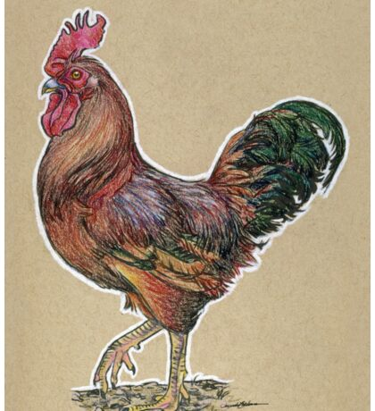 State Bird Series:  Rhode Island - Rhode Island Red Chicken Sticker