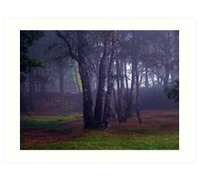 Forest Within The Fog Art Print