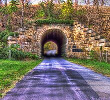 Railroad Tunnel by James Brotherton
