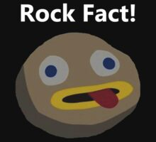 Rock Fact! by abibennett29