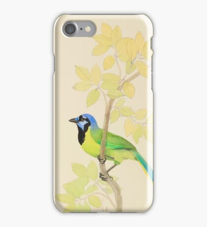 Colorful Green Jay with Foliage iPhone Case/Skin