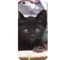 Weasel iPhone Case/Skin