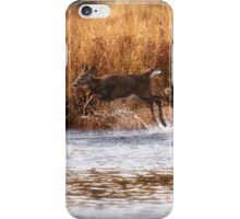 White Tail Deer jumping into the Creek - Parc National Mont Tremblant iPhone Case/Skin