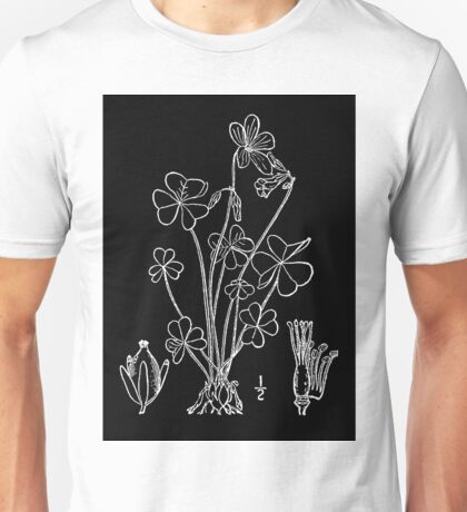 Britton And Brown Illustrated flora of the northern states and Canada 1048 Oxalis violacea L Violet woodsorrel Unisex T-Shirt