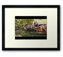 Tough Enough Framed Print