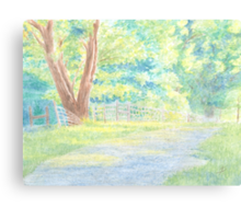 The Shaded Path Canvas Print