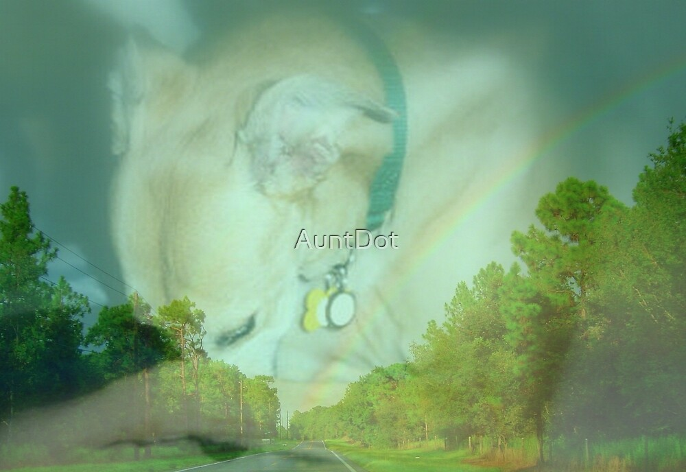 Abby Rose at Rainbow Bridge by AuntDot