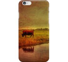 Cows On The Marsh iPhone Case/Skin