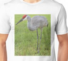 Front yard Sand Hill Unisex T-Shirt