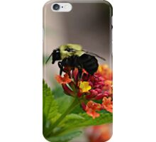 The Gatherer iPhone Case/Skin