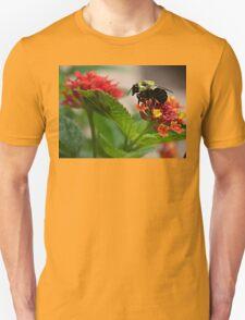 The Gatherer T-Shirt