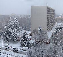 Town under the snow by KERES Jasminka
