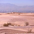 ATV Trails in the Nevada Desert by Kate Purdy