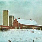 The Dairy Farm by vigor