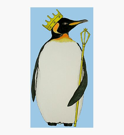 The King Penguin (Blue) Photographic Print