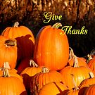 Give Thanks #2 by WildThingPhotos