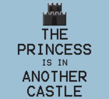 The Princess is in Another Castle by ScottW93